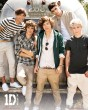 One Direction Airstream - plakat